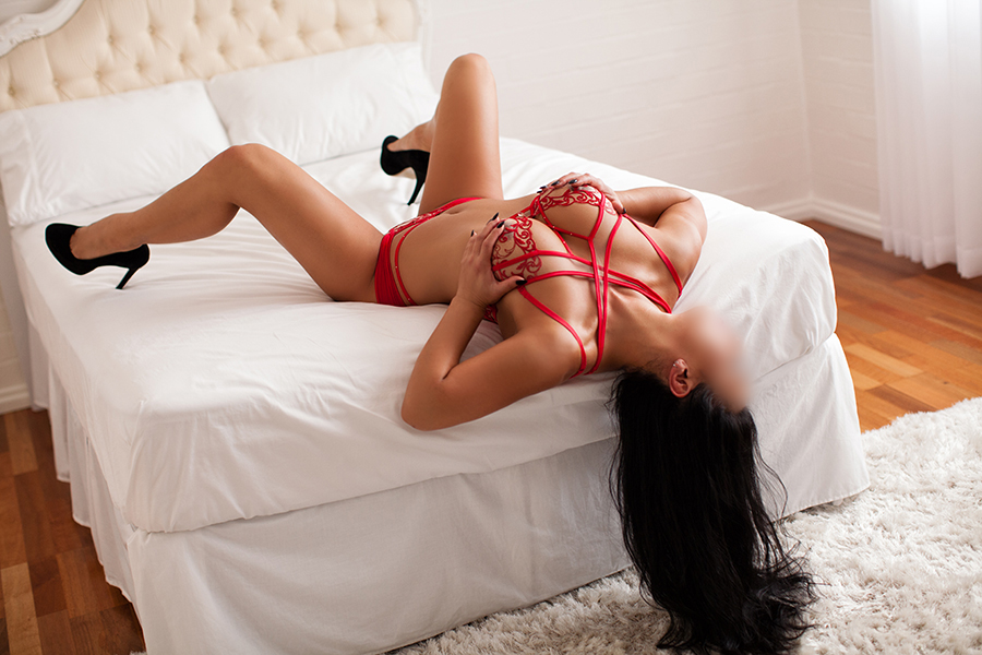 Jada Bellus | Punter Planet Brisbane Escort