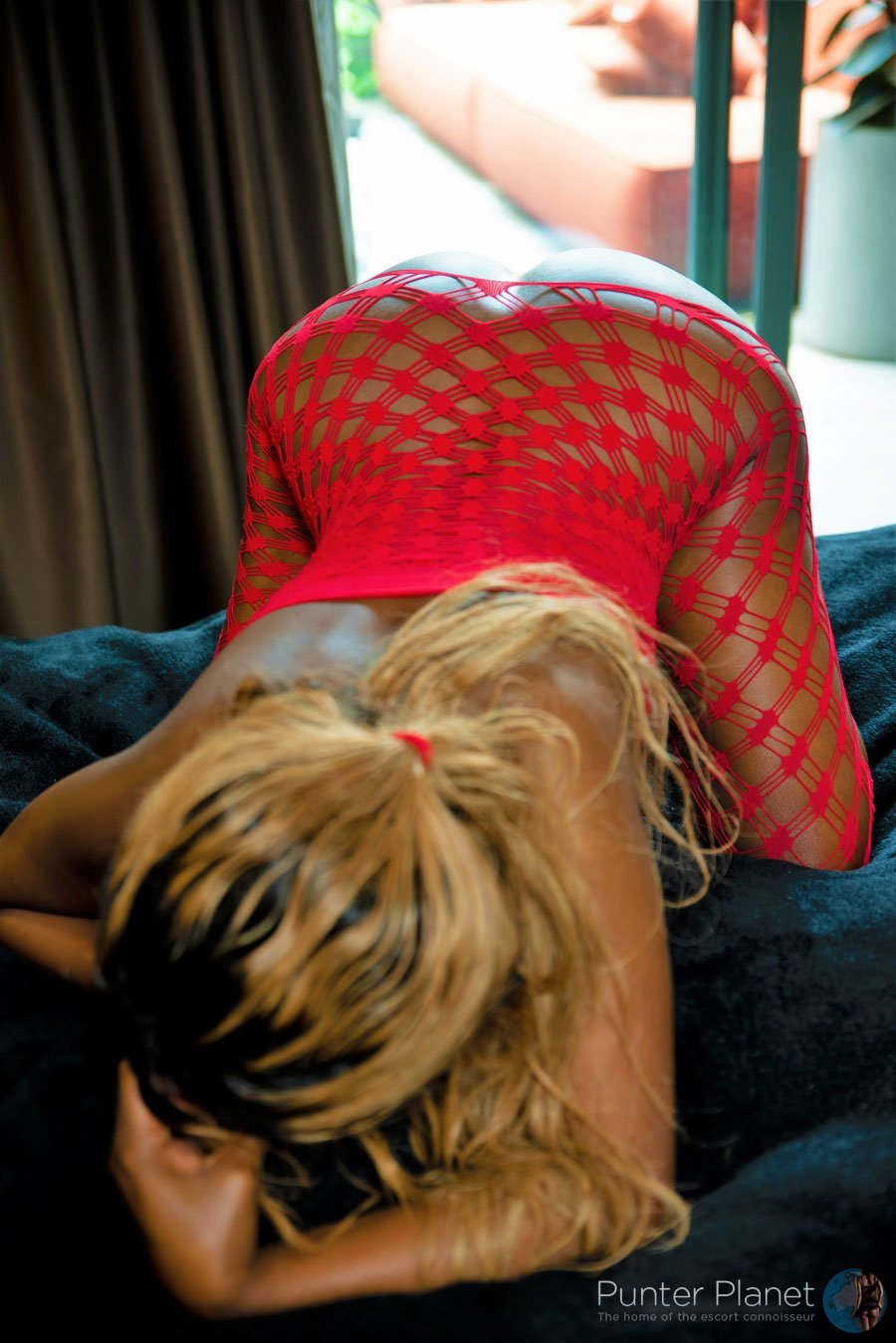 Safari Missy visiting SYDNEY, Newtown  20th  - 22nd March